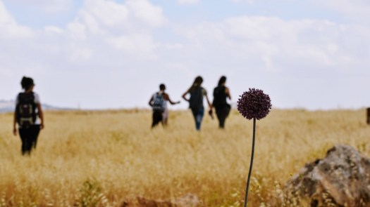 Living in Jordan as Expat - Hiking from Fuheis to Iraq Alameer