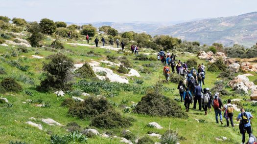 a group of hikers walking along a green scenery with trees and mountains in the background in Northern Jordan
