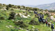 a group of hikers walking along a green scenery with trees and mountains in the background - bes spots in Jordan