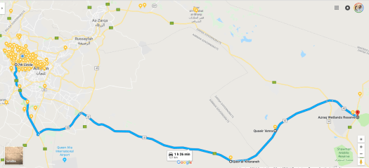 Amman to Azraq Wetland Reserve