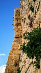 Steep Walls at Karak Castle