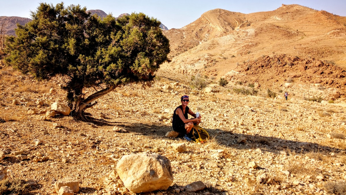 Taking a rest under the shadow of a tree, Jordan trail
