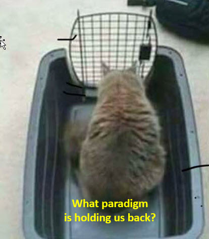 Limits of a Paradigm