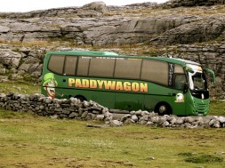 the Paddywagon