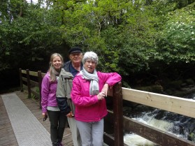 hike through the Clare Glens