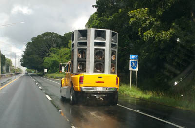 - 30 (Crazy) Things You Will See Driving in Puerto Rico