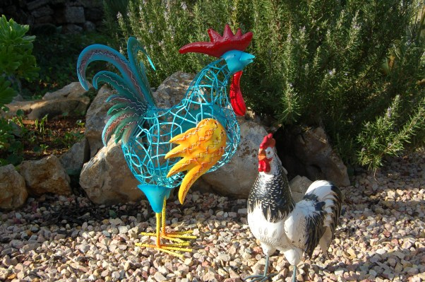 No eggs - just my cluck!