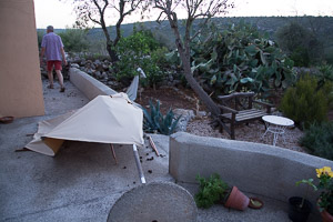 Another broken parasol (photo by Duncan Matthews)