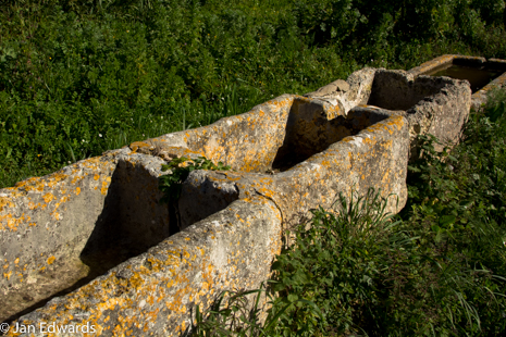 Old stone drinking troughs - a marker for the route