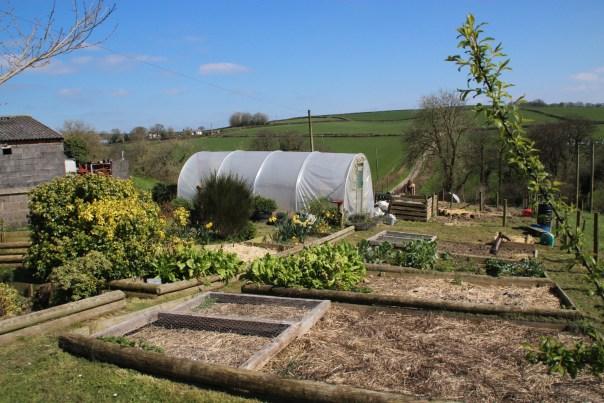 Bronhaul Farm Garden