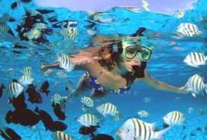 canto_snorkel2
