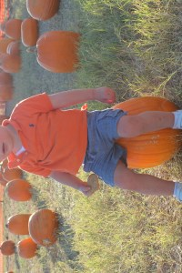 Pumpkin Patch 2015 (16)