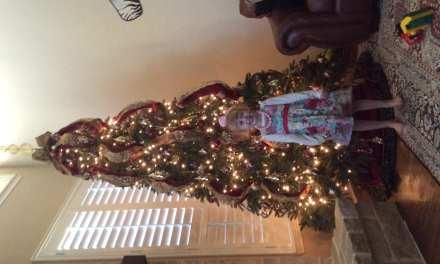The Joy of Christmas Decorating!