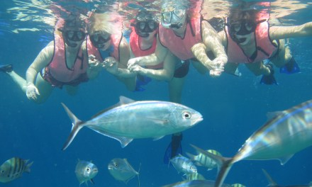 Catamaran Sail and Snorkel Adventure in Cozumel