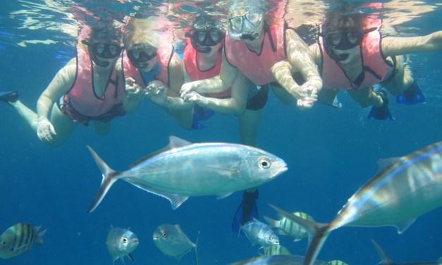 Catamaran Sail and Snorkel Adventure in Cozumel