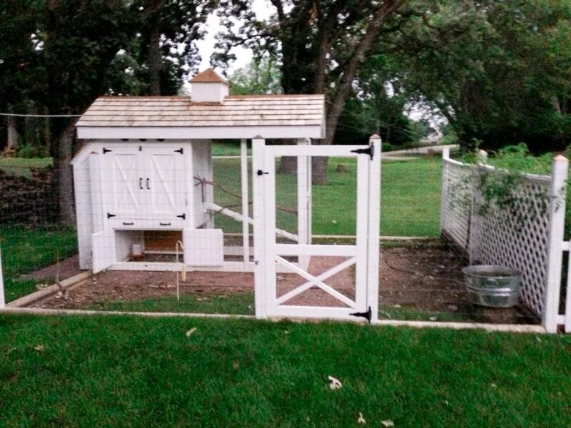Fancy white chicken coop made by my husband