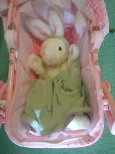 The cuddly toy version of the rabbit character in the wipe clean book also became part of the game.