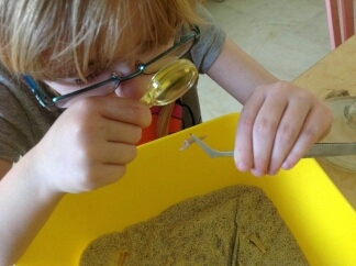 100 Days of Home Ed #LoveHomeEd – Day 23 (Witts in the Wild)