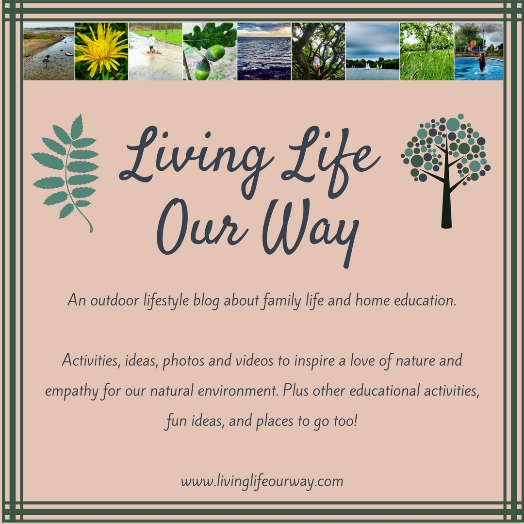 Blogtober 2016 - Day 14: Meaning Behind My Blog Name - Living Life