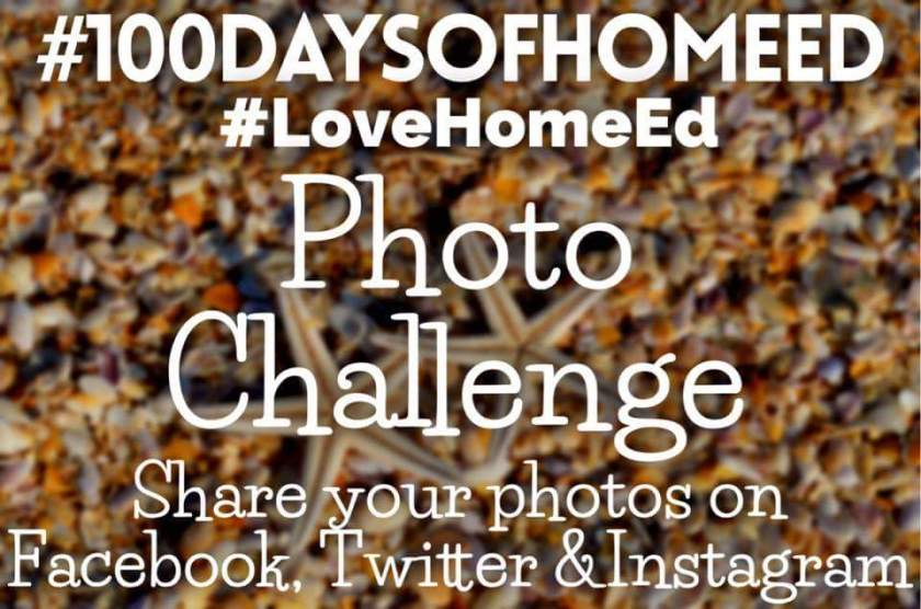 #100daysofhomeed, #LoveHomeEd, home education, hashtag, photo challenge, guest post, interview, Q and A, Living Life Our Way