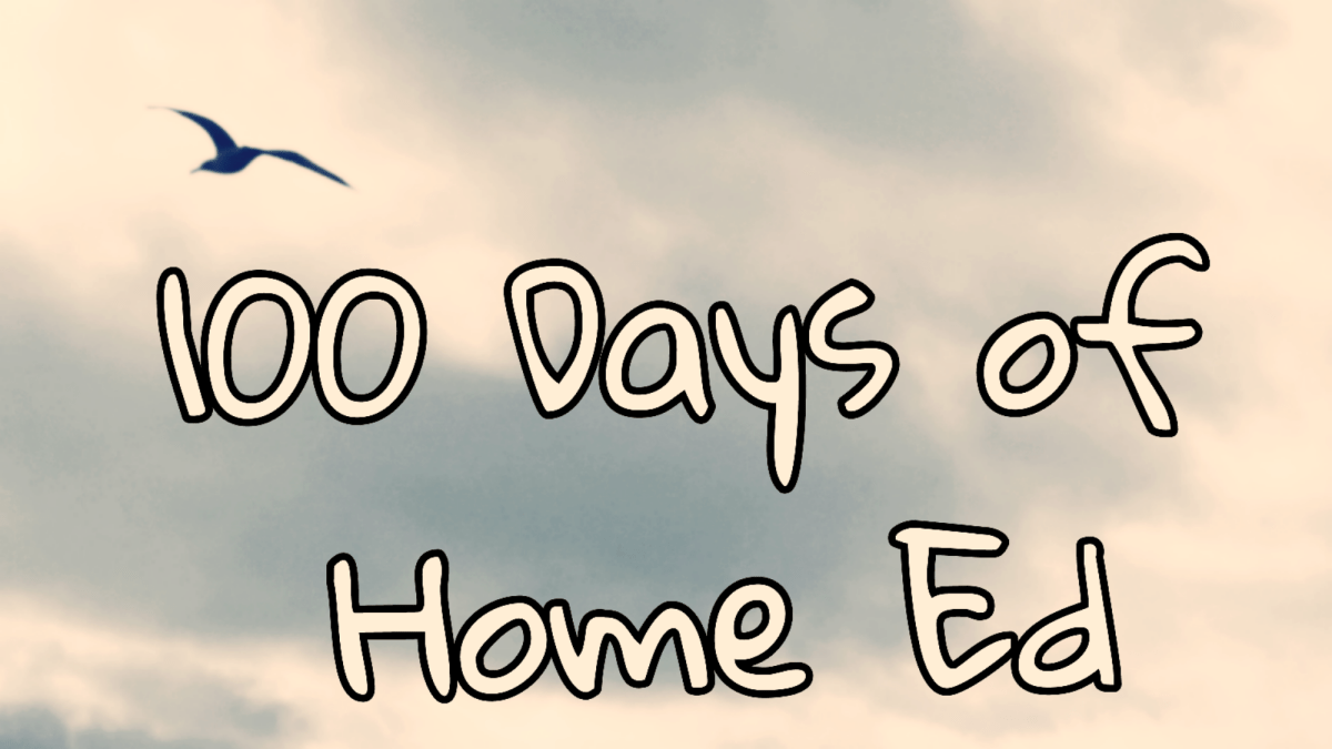 100 Days of Home Ed – Day 55 (As I Think I Say)