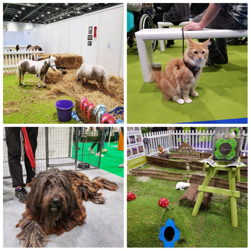 National Pet Show, Excel, London, days out, events, pets, family fun, animal lovers, freedom to learn