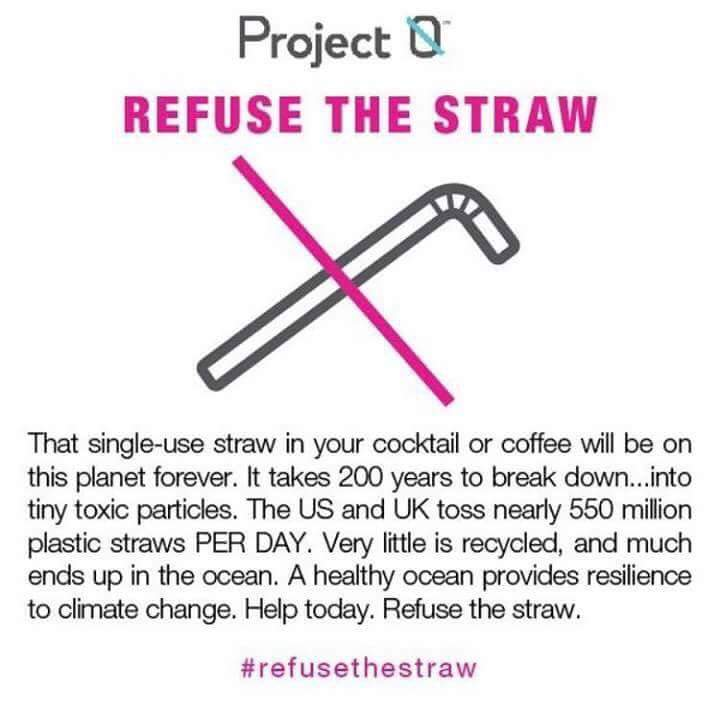 #refusethestraw, #strawless, #StopSucking, plastic free, single use plastic, plastic straws, environment, sustainability, eco, green living, campaign, St Albans, Herts