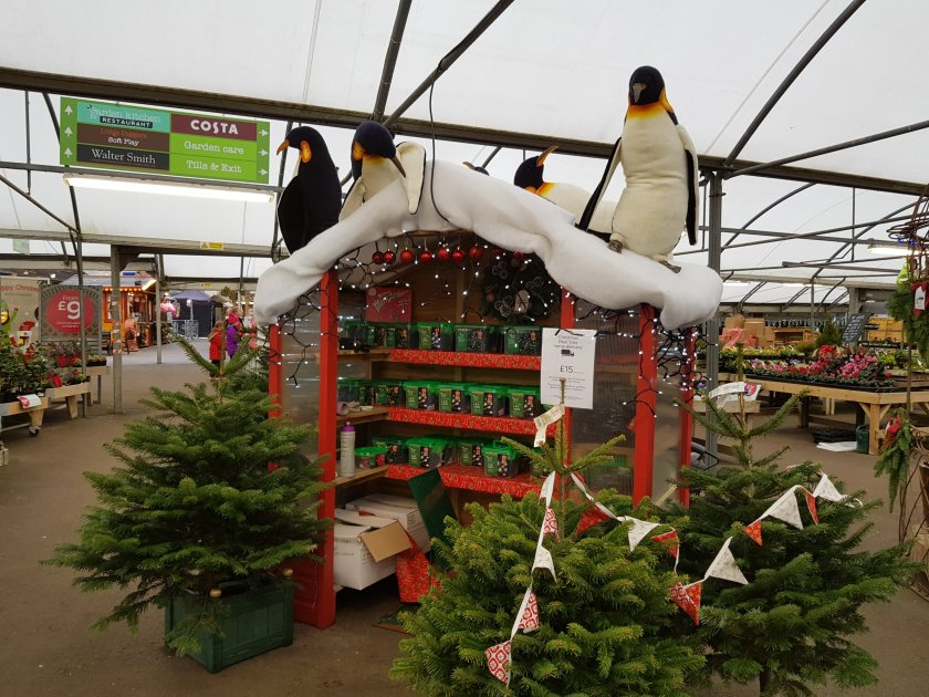 Worlds End Wyevale Garden Centre Christmas display