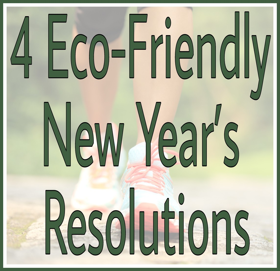 4 Eco-Friendly New Year's Resolutions