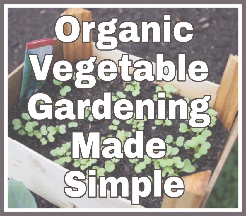 Organic Vegetable Gardening Made Simple title on faded background image