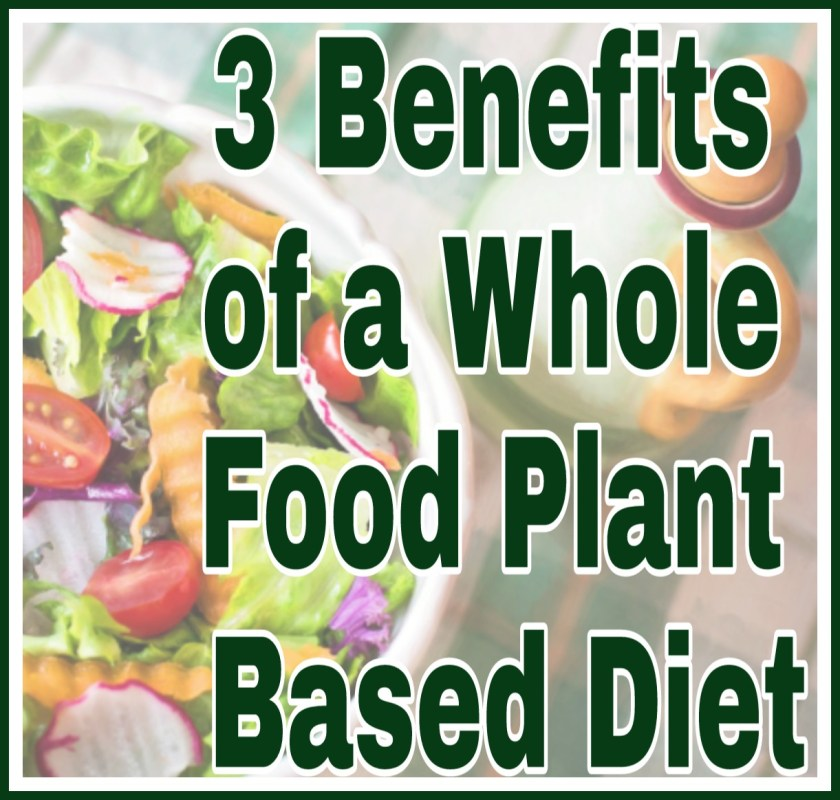 3 Benefits of a Whole Food Plant Based Diet title on faded image of salad in a bowl
