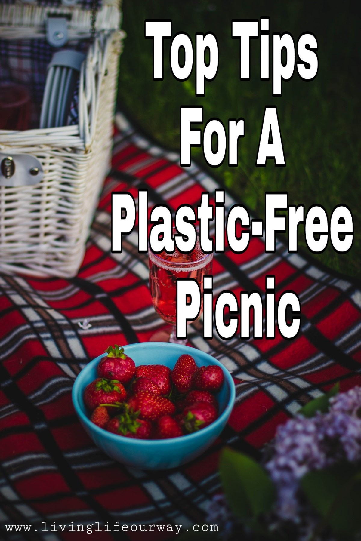 Top Tips For A Plastic-Free Picnic