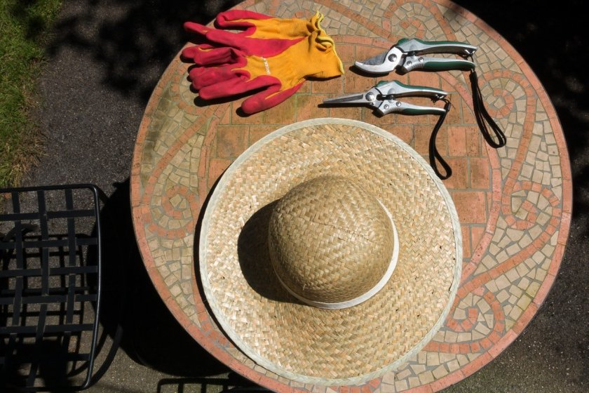 A flatlay picture of gardening gloves, hat and pruning shears