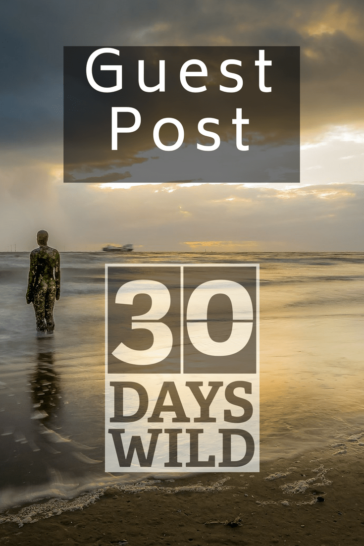 Anca's Lifestyle – 30 Days Wild Guest Post