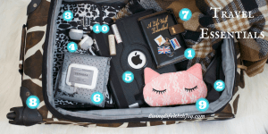 Top Ten Travel Essentials