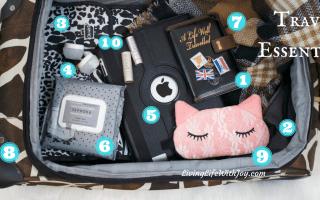 Top Ten Travel Essentials