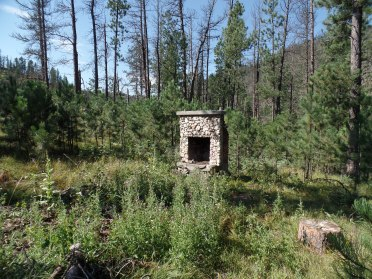 A fireplace is all that remains of one of the many Mystic town buildings that is now no more.