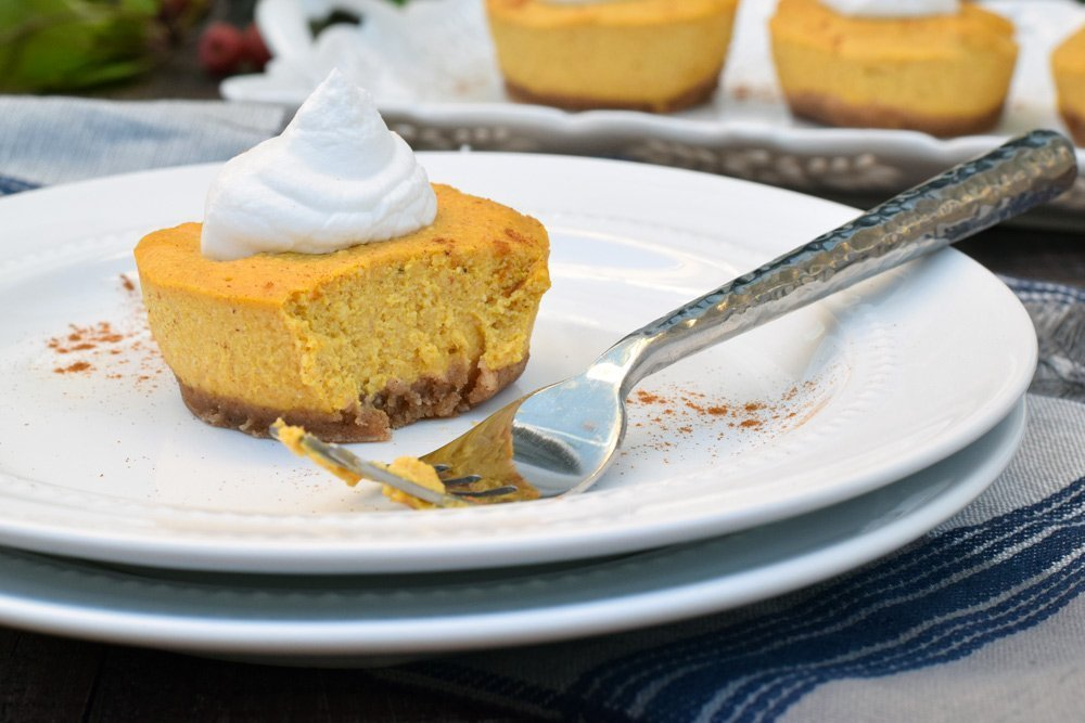 Pumpkin Pie Cheesecake (No-bake & Dairy-free!)