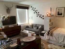 100 Awesome Apartment Studio Storage Ideas Organizing (15)