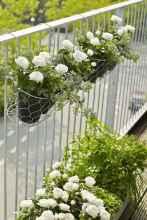 50 cool apartment garden ideas (10)