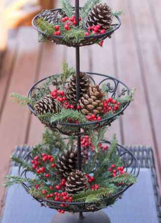 45 Best Christmas Decorations Outdoor Pine Cones Ideas (41)