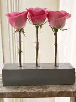 25 Easy DIY Test Tube Vase Crafts Ideas (11)