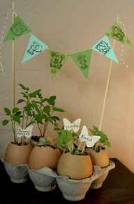 30 Brilliant DIY Egg Shell Seed Starters Crafts Ideas (17)