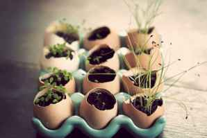 30 Brilliant DIY Egg Shell Seed Starters Crafts Ideas (18)