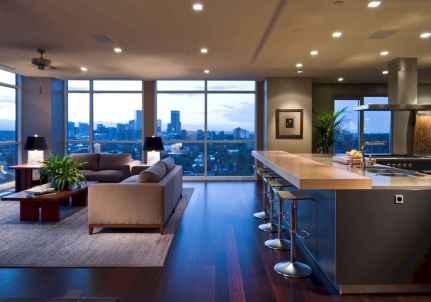 70 Cool Modern Apartment Kitchen Decor Ideas (5)