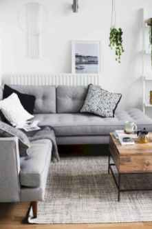 80 Pretty Modern Apartment Living Room Decor Ideas (10)