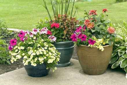 60 Gorgeous Container Gardening Ideas Decorations And Makeover (19)
