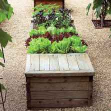 60 Gorgeous Container Gardening Ideas Decorations And Makeover (26)