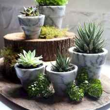 60 Gorgeous Container Gardening Ideas Decorations And Makeover (32)