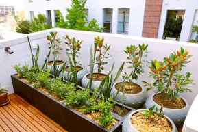 60 Gorgeous Container Gardening Ideas Decorations And Makeover (41)
